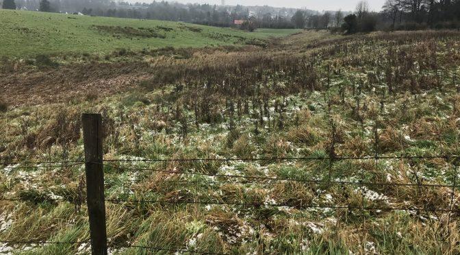 Kaltluftschneise Beverau – Schönthal nicht zu übersehen